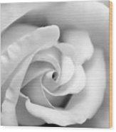 Rose Flower Black And White Monochrome Wood Print