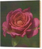 Rose Fragrance Wood Print
