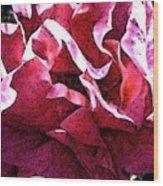 Rose Fresco Wood Print