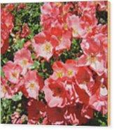 Rose Garden Pink Roses Botanical Landscape Baslee Troutman Wood Print