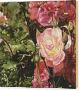 Rose Garden Wood Print by Teri Starkweather