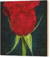 Rose - Id 16236-105012-4033 Wood Print