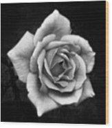 Rose In Mono. #flower #flowers Wood Print