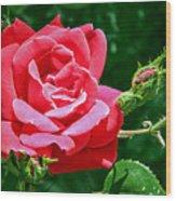 Rose Is Its Name Wood Print