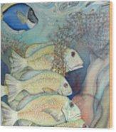 Rose Island II Wood Print by Liduine Bekman