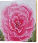 Rose Wood Print by Joni McPherson