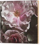 Rose Kiss Wood Print