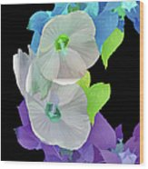 Rose Of Sharon Painted Wood Print
