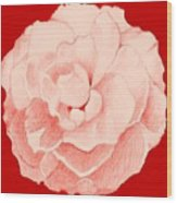 Rose On Red Wood Print