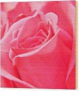Rose Petals - 1 Wood Print