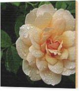 Rose Rain Wood Print