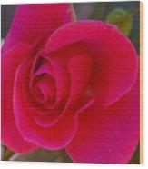 Rose Simplicity Wood Print