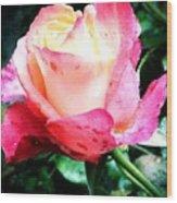 Rose Solitude  Wood Print