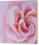 Rose Spiral Art Pink Roses Floral Baslee Troutman Wood Print