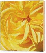 Rose Spiral Flower Garden Baslee Troutman Wood Print