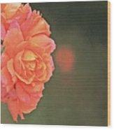 Rose Symphony Wood Print