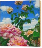 Rose To The Sky Wood Print
