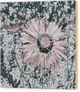 Rose Wine Daisies Wood Print