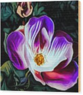 Rose With No Boundaries Wood Print