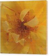 Rose Yellow Wood Print