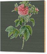 Rose101 Wood Print