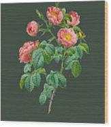 Rose114 Wood Print