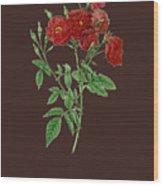 Rose115 Wood Print