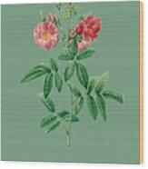 Rose127 Wood Print