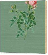 Rose138 Wood Print