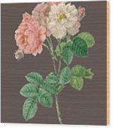 Rose155 Wood Print