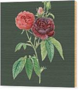 Rose64 Wood Print