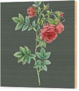 Rose74 Wood Print
