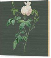 Rose80 Wood Print