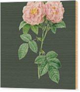 Rose82 Wood Print