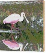 Roseate Spoonbill II Wood Print