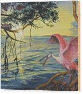 Roseate Spoonbills Among The Mangroves Wood Print