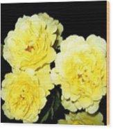 Roses 11 Wood Print