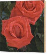 Roses-5840 Wood Print