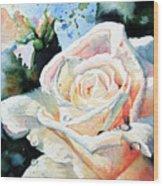 Roses 6 Wood Print