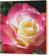 Roses 7 Wood Print