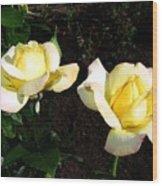 Roses 8 Wood Print