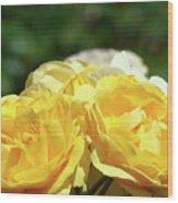 Roses Art Prints Canvas Sunlit Yellow Rose Flowers Baslee Troutman Wood Print