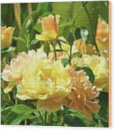 Roses Art Prints Rose Garden Flowers Giclee Prints Baslee Troutman Wood Print