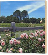 Roses At Rusack Vineyards Wood Print