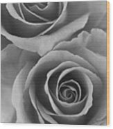 Roses Black And White Wood Print