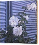 Roses De Lignes Bleues Wood Print