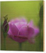 Roses Dream Wood Print