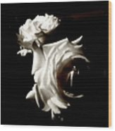 Roses In Moonlight 8 Wood Print