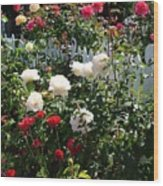 Roses In Red And White Wood Print