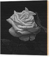 Roses In The Rain Wood Print